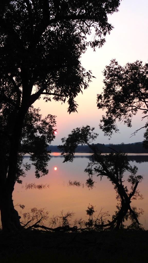 Evenings at Tadoba lake