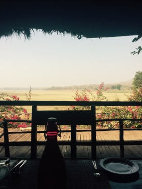 Breakfast views at The Bison - Kabini
